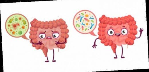 Probiotika-Einnahmen können Atembeschwerden lindern – Heilpraxis